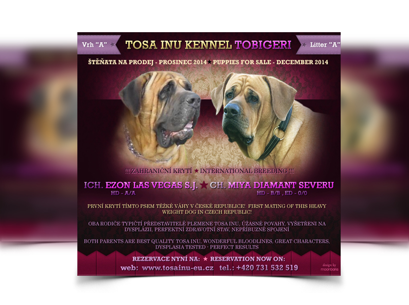 breeder webdesign dog kennel design best dog breeder webdesign