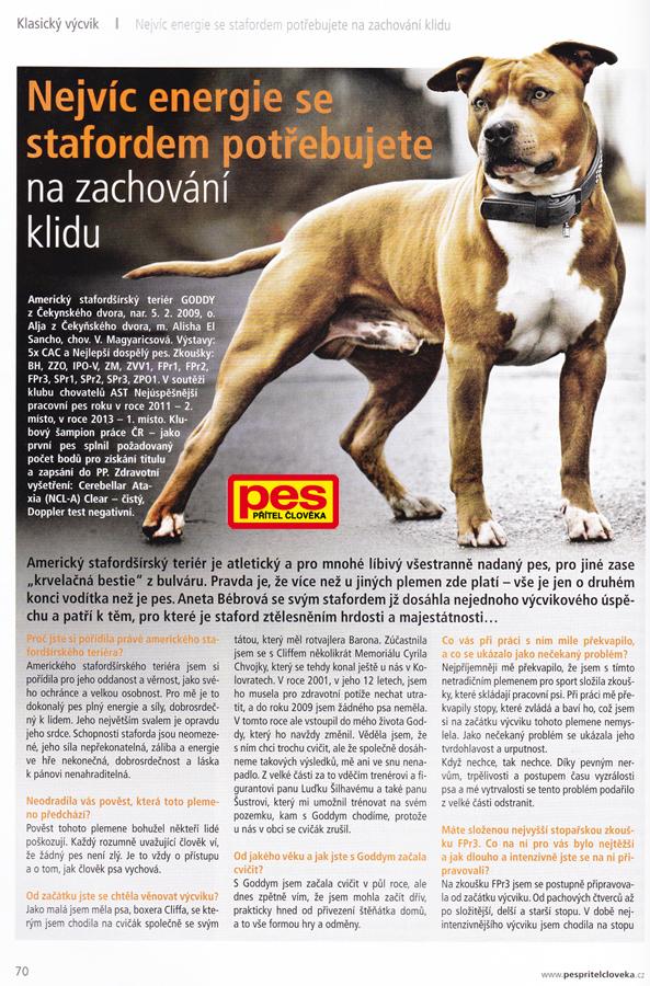 Focení psů Praha fottograf psů by moonbarks